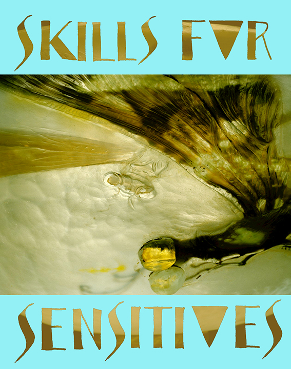 skills-for-sensitives-promo-image-flat